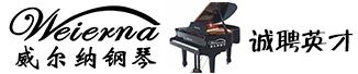 广州市雷音新乐器有限公司
